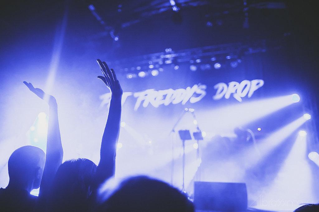 Fat Freddy's Drop // 2014
